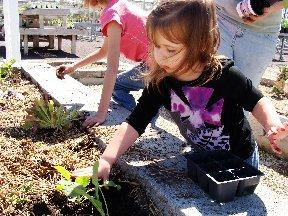 Children planting in a garden