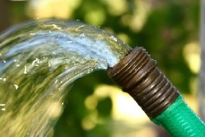 Garden hose end with water flowing out