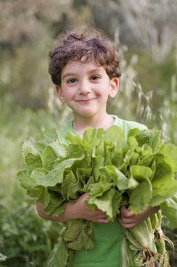 Lettuce-BoyHoldingArmFullsW