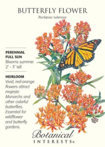 SeedPack-ButterflyFlowerC-BI