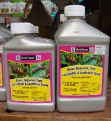 FL-BorerBagwormTentCater&Leafminer5-15sw